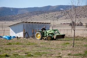John Tannaci, saving the day on his tractor.