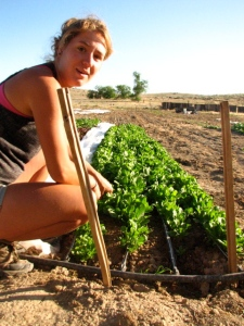 My dear friend Kate Sanderson helping with harvest! She's a super star farmer from the days at Green Fire Farm!