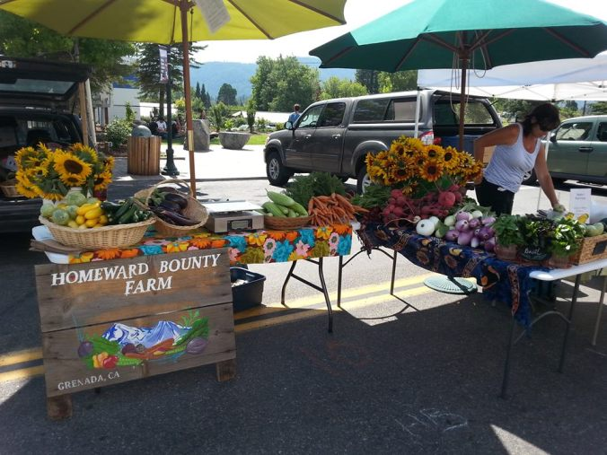 Homeward Bounty Farm at the Mt. Shasta Farmers' Market - 2014