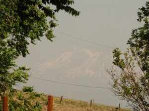 First smokey day on Sunday, from a fire in Bend OR.