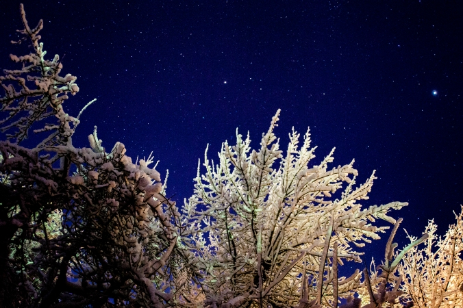 Snow and Stars-1